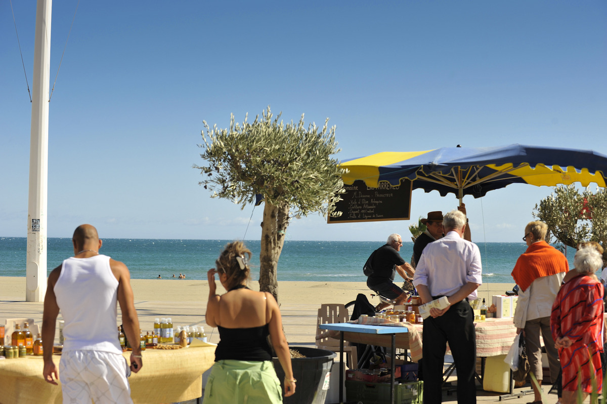 Canet en roussillon a faire a voir march s en journ e - Place de port disponible mediterranee ...